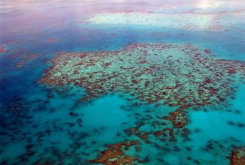 Voyage en Australie : ce qu'il faut faire absolument